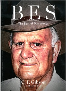BES - The Best of Two Worlds